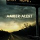 Amber Alert (2012) - Found Footage Films Movie Poster (Found footage Horror)