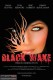 Black Wake (2016) - Found Footage Films Movie Poster (Found footage Horror)