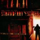 Strawberry Estates (2001) - Found Footage Films Movie Poster (Found Footage Horror)